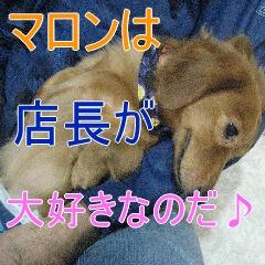 IMG_4151_20101003190432.jpg
