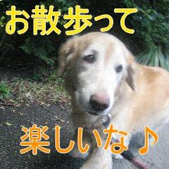 IMG_4246_20110107145925.jpg