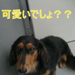 IMG_5629.jpg