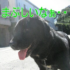 IMG_5845.jpg