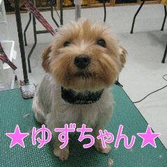 IMG_6402.jpg