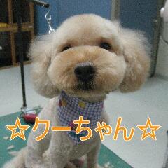 IMG_6536.jpg