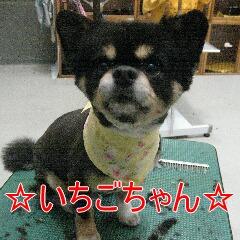 IMG_6653.jpg