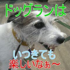 IMG_8225.jpg