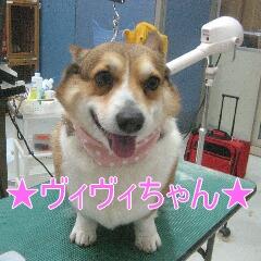 IMG_8553.jpg