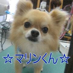IMG_8601.jpg