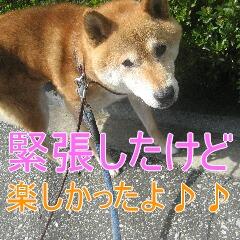 IMG_9750.jpg