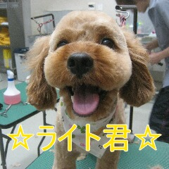 IMG_9797.jpg