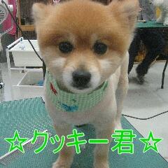 IMG_9891_20100818190833.jpg