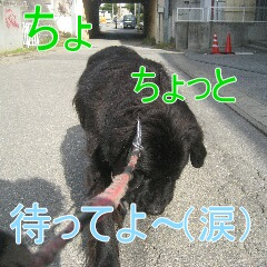 IMG_9892.jpg
