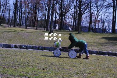 2010-2月大山公園 104_picnik