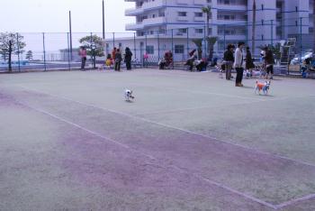 2010-3月ダンス発表会&その他 003