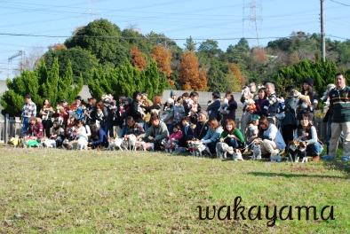 2010-12-19  貴志川オフ会 046