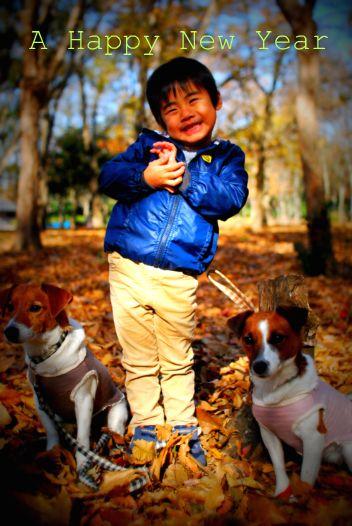 2010-12-12 大泉緑地 2