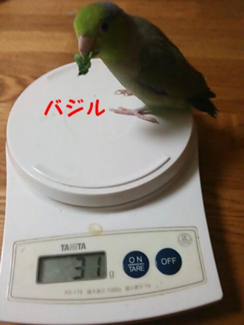 20130427_212249.jpg