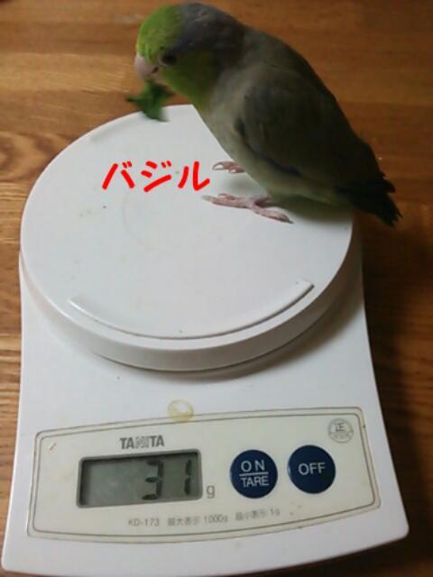 20130427_212329.jpg