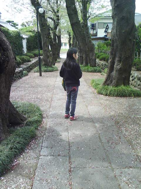 散歩ミー (2)