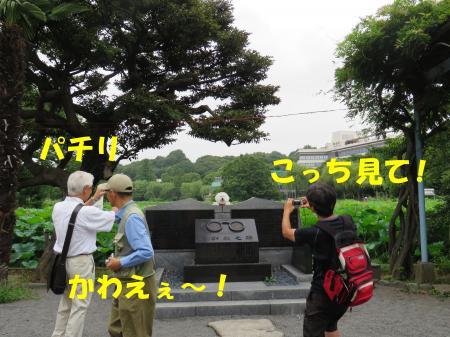 20130731-10.jpg
