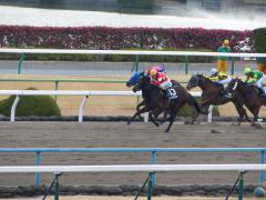 レース:レッドグランザ