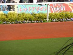 パドック:レッドアリオンの応援幕