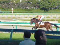 返し馬:レッドアリオン
