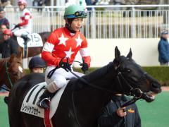 パドック:レッドサクセサーと川須騎手