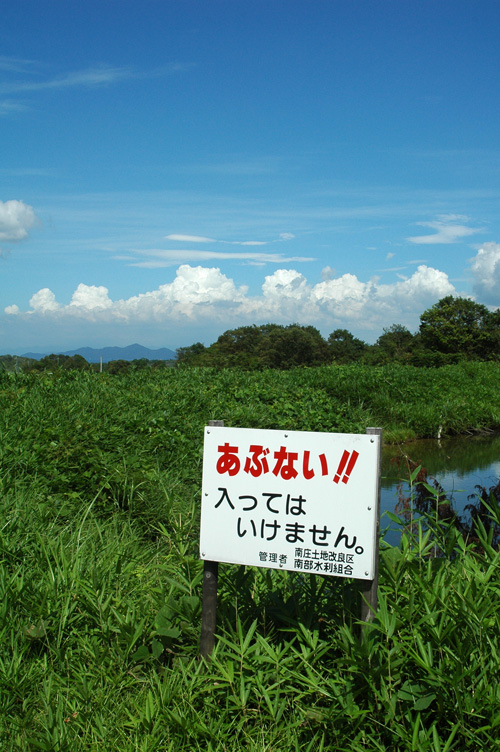 satoyama_11_7_8_5.jpg