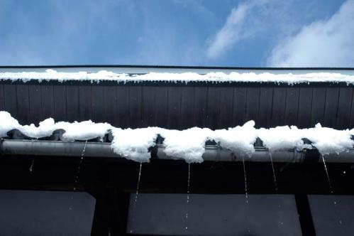 snow_12_2_19_2.jpg