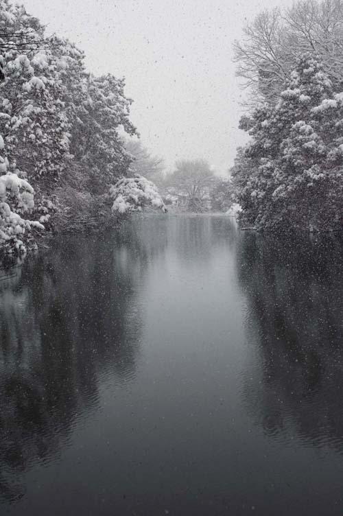 snow_miyaike_08_2.jpg