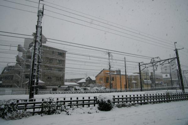 雪 / Snow