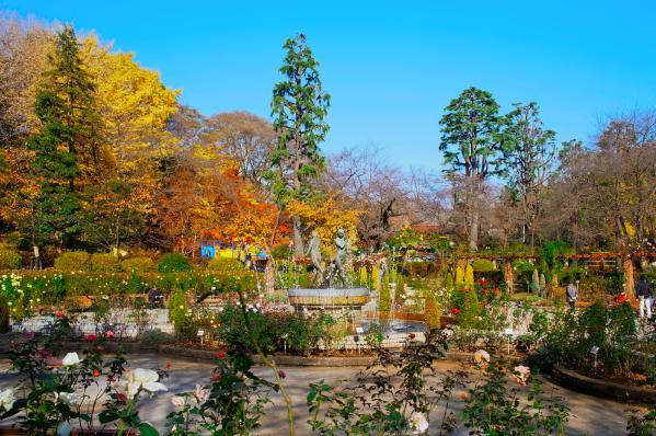 里見公園 / The Satomi Park