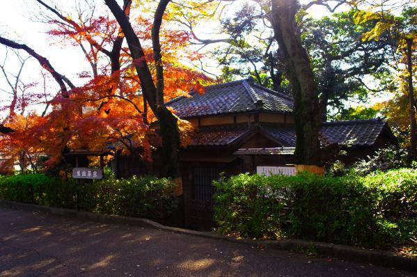 紫烟草舎 / Shiensousya