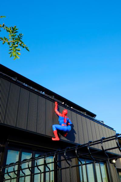 スパイダーマン/Spiderman