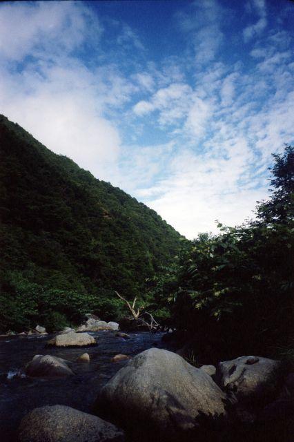 7月下旬の南魚沼2