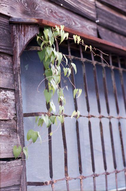 昭和の窓2