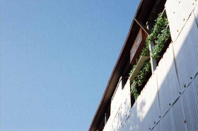 昭和の窓6