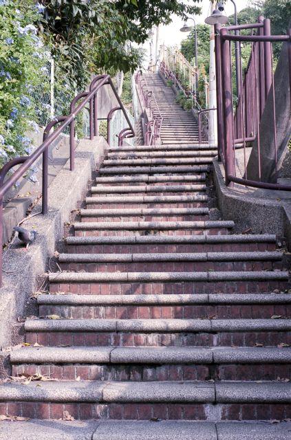 めぐみ坂西側階段2