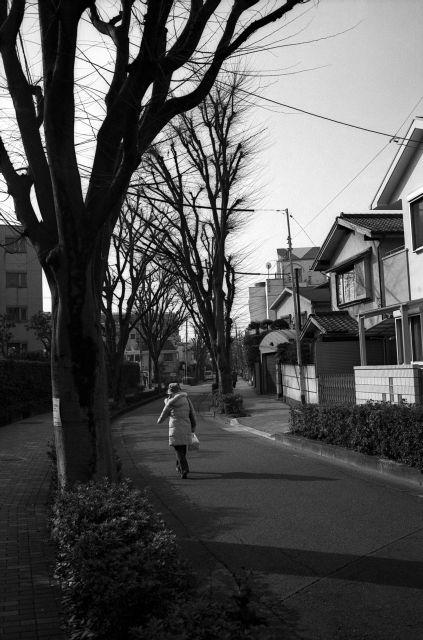 江古田川01a