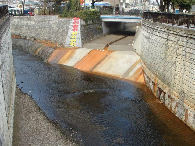 江古田川01m