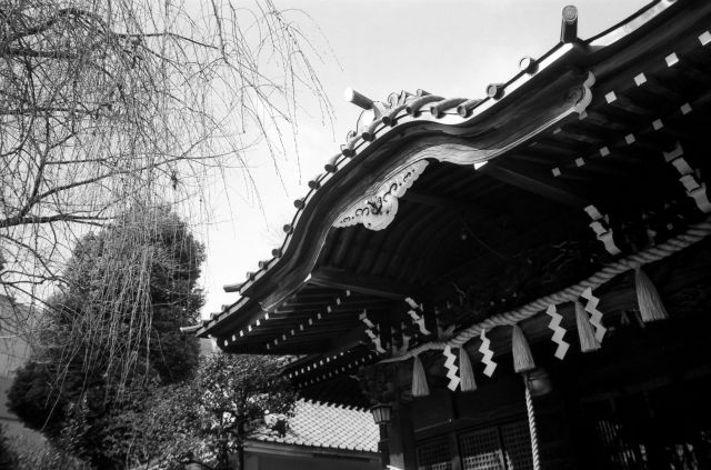 白山神社01d