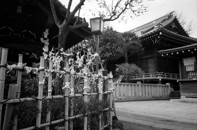 白山神社01c