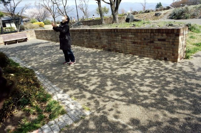 桜の木の下で02b
