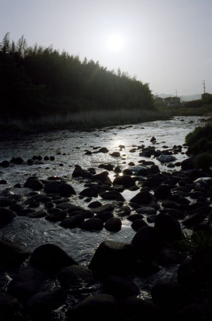 大見川20110502e