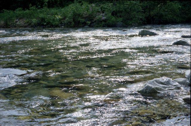 南魚沼2011-01a