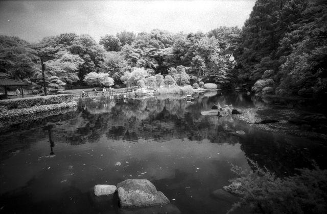 水面のある公園01d