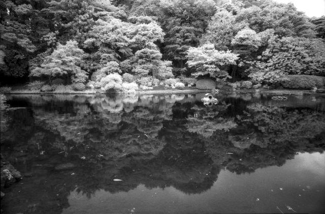 水面のある公園01c