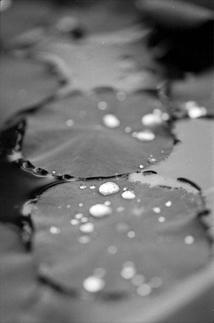 水滴01b