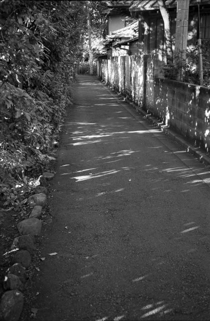 朝の小路01a