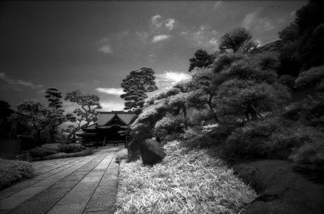 梅雨明け間近な風景01f