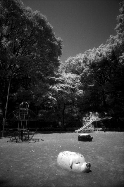 梅雨明け間近な風景01d